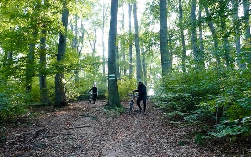 Cyklovýlet Wienerwald